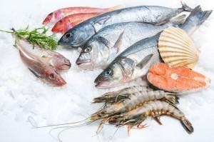 бизнес на продаже рыбы