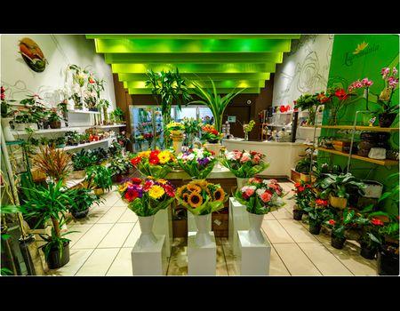 магазин продажи цветов_05_24